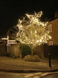 Milverton Christmas tree